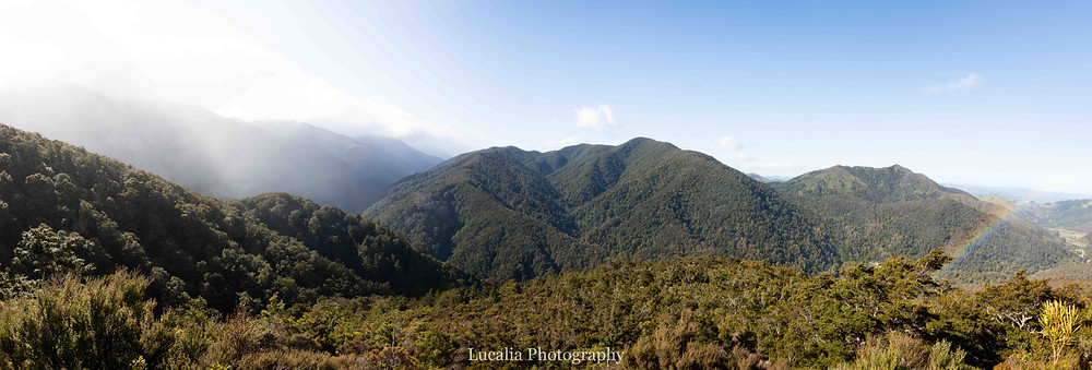 Rocky Lookout, Mt Holdsworth wedding, Wairarapa wedding photographer