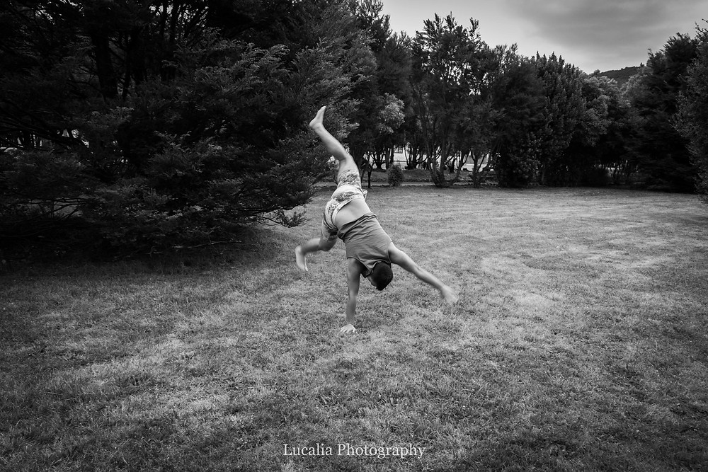 cartwheel in Dorset Square Featherston Wairarapa