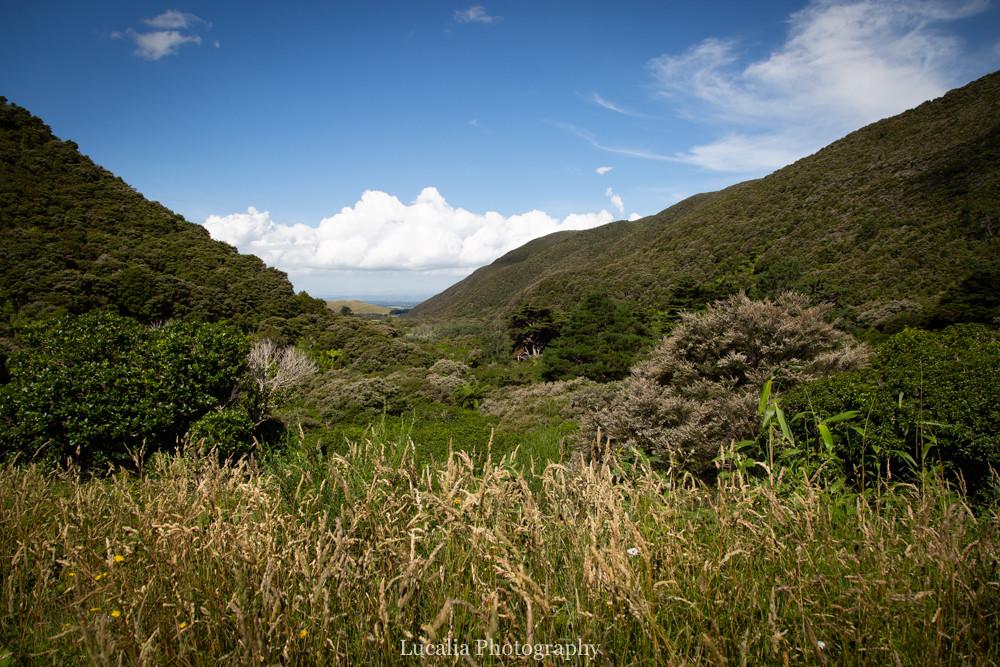 View from Remutaka Incline towards Lake Wairarapa