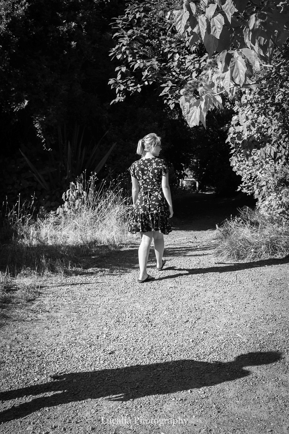bride-to-be walking along a path with her fiancee's shadow behind, Zealandia, Wellington
