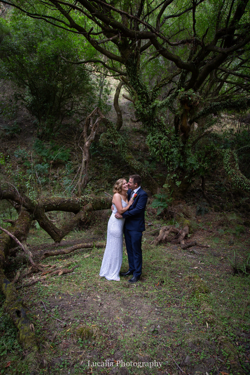 wedding couple portrait in forest clearing, Wairarapa wedding photographers