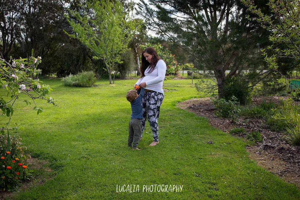 son and pregnant mum on the grass, Wairarapa maternity photographer