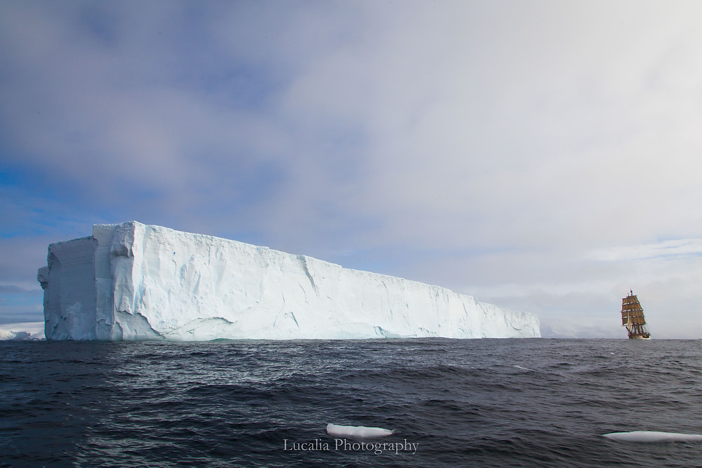 A photograph of the tall ship Bark Europa sailing next to an enormous tabular iceberg