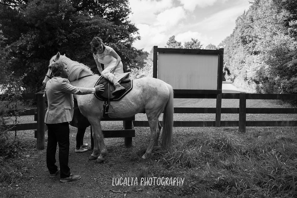 bride getting onto a horse held by her groom, Kiriwhakapapa Wairarapa wedding photographer