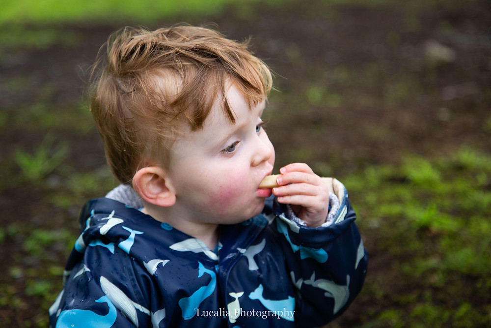 son eating a piece of apple, Wairarapa family photographer