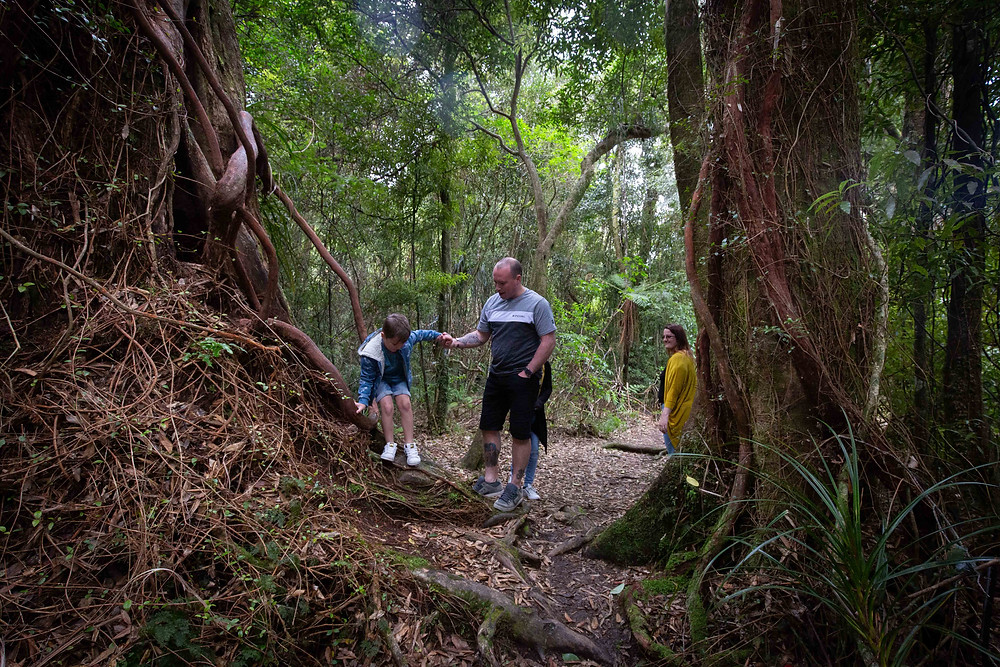father helping his son climb down a tree watched by mum, Waiohine Gorge, Wairarapa family photographer