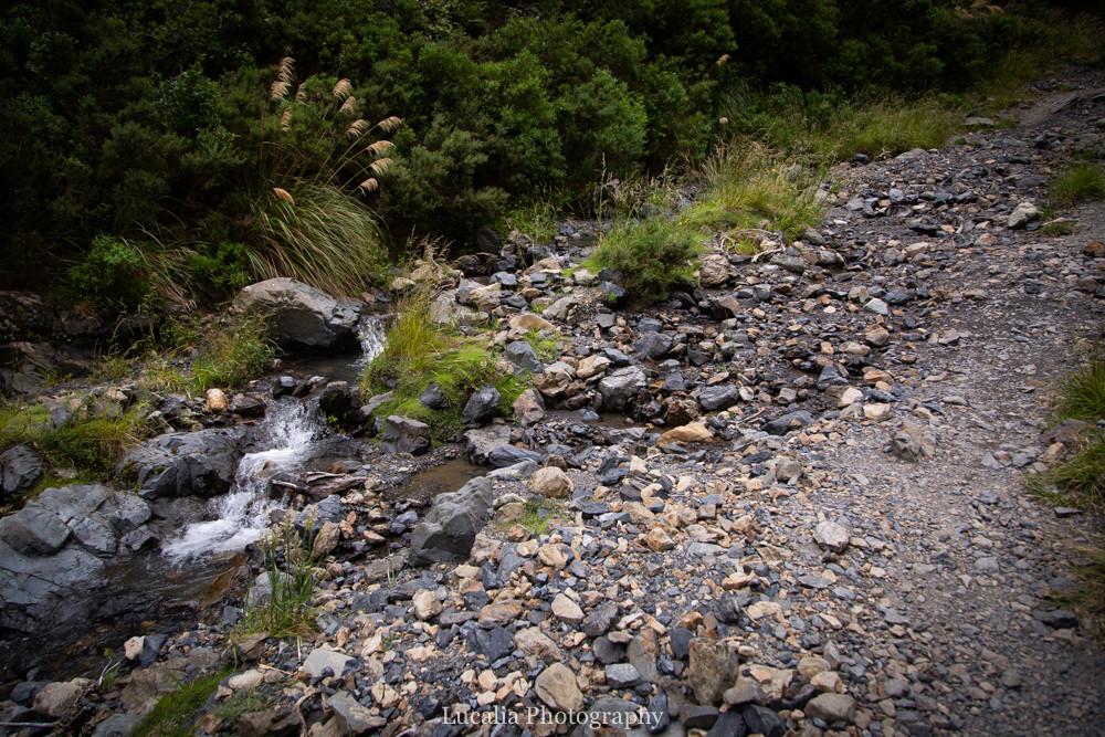 Creek underneath Siberia Curve, Remutaka Incline, Wairarapa walk