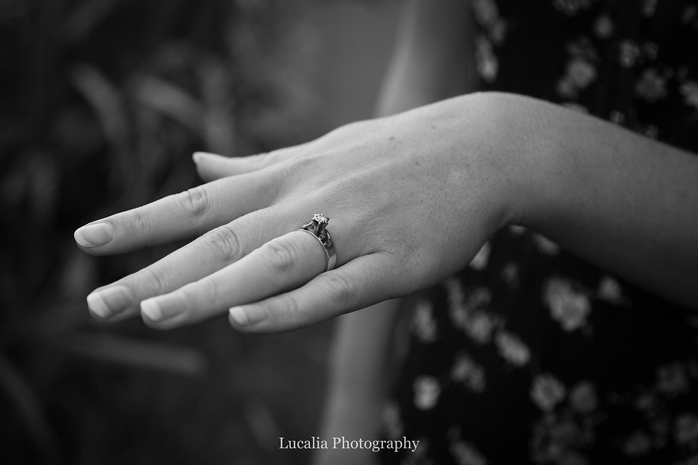 engagement ring, Zealandia, Wellington