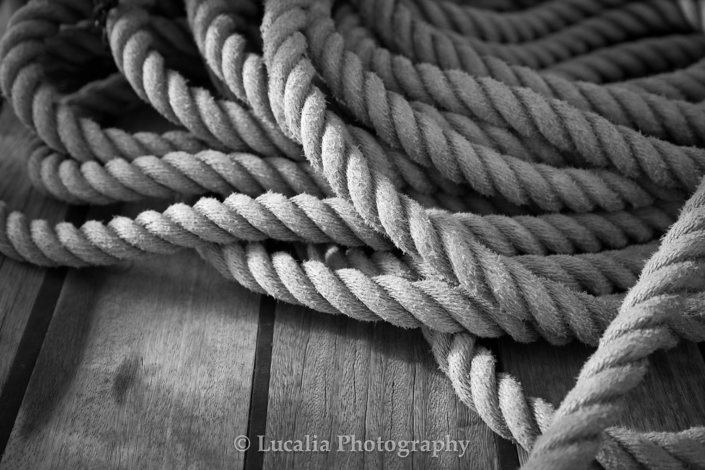 A black and white photograph of coiled rope on a ship's deck.