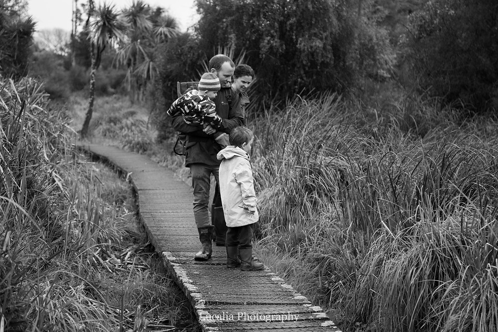 family looking at wetlands, Carter Scenic Reserve, Wairarapa family photographer