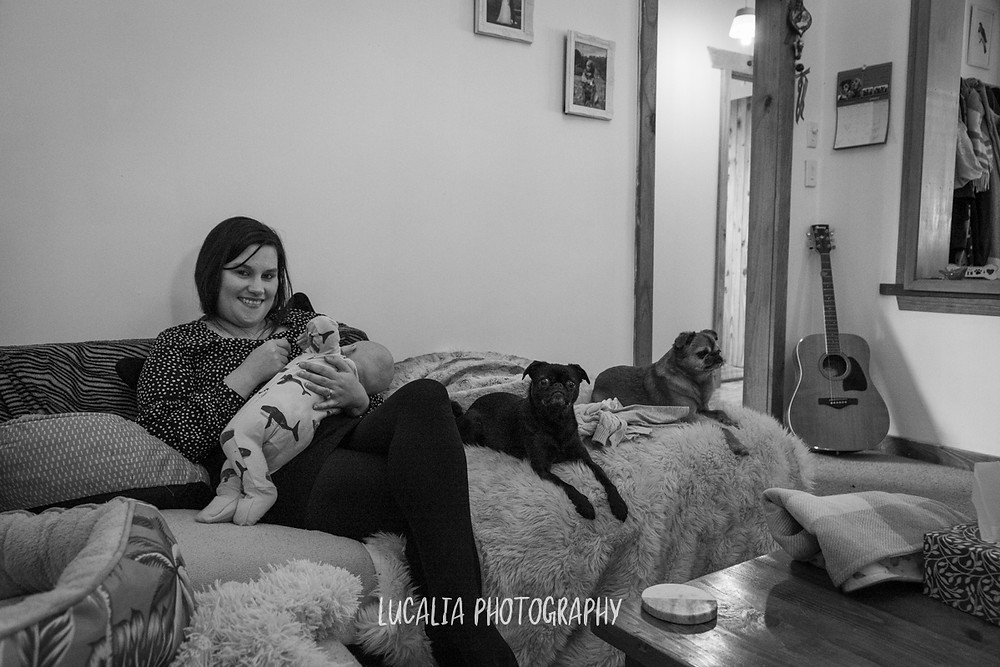 mum and baby feeding on lounge at home, Mount Holdsworth, Wairarapa family photographer