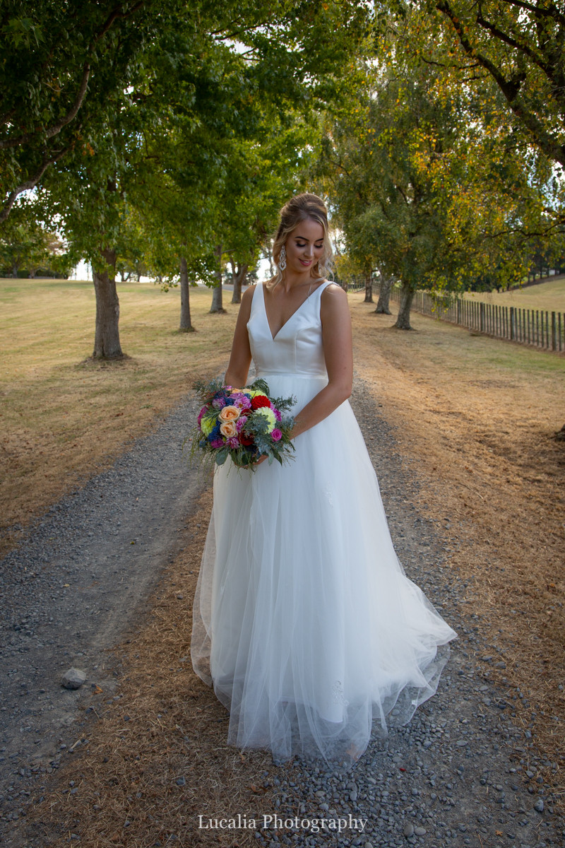 bride in an avenue of trees, Wairarapa