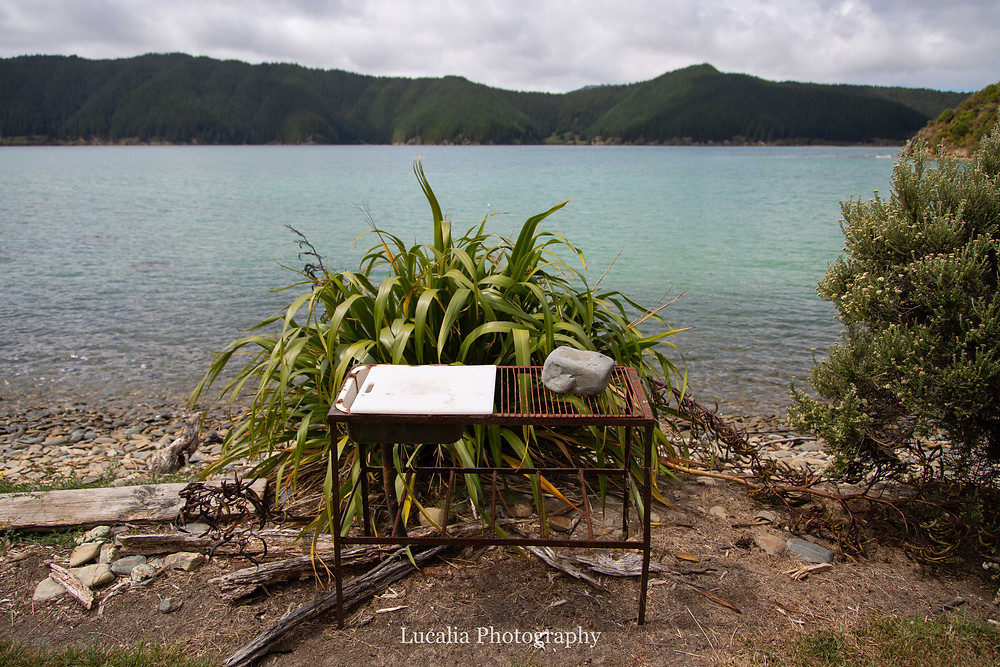 fish cleaning sink overlooking a bay, Wairarapa photographer