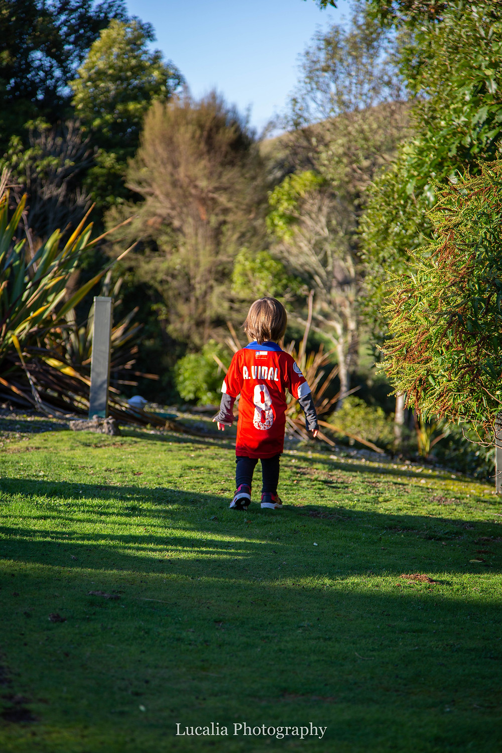 boy wearing soccer shirt walking away from camera on the grass, Wairarapa family photographer