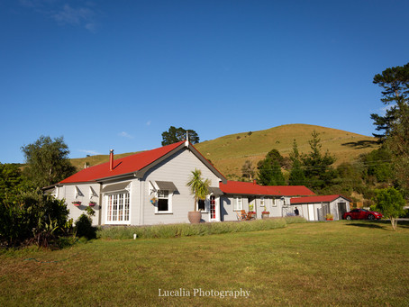 Mount Bruce Lodge: charming Wairarapa wedding accommodation