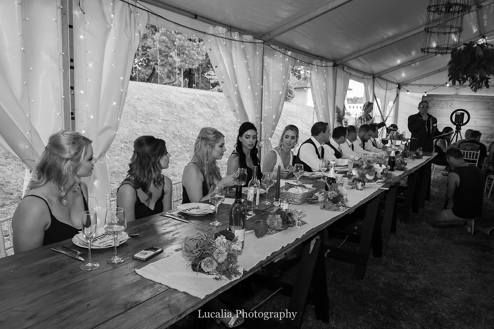 wedding party during speeches inside marquee wedding, Wairarapa