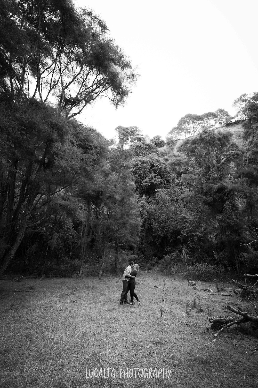 couple kissing in forest clearing, Martinborough Wairarapa wedding photographer