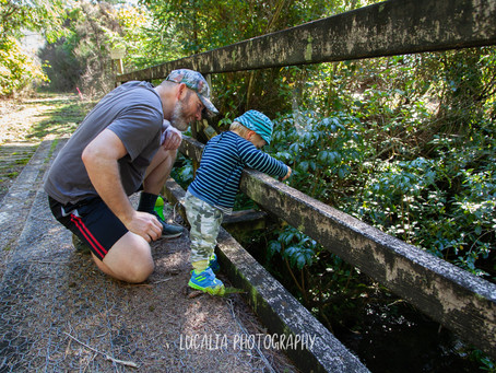 I've reduced my prices: here's why, Wairarapa photographer