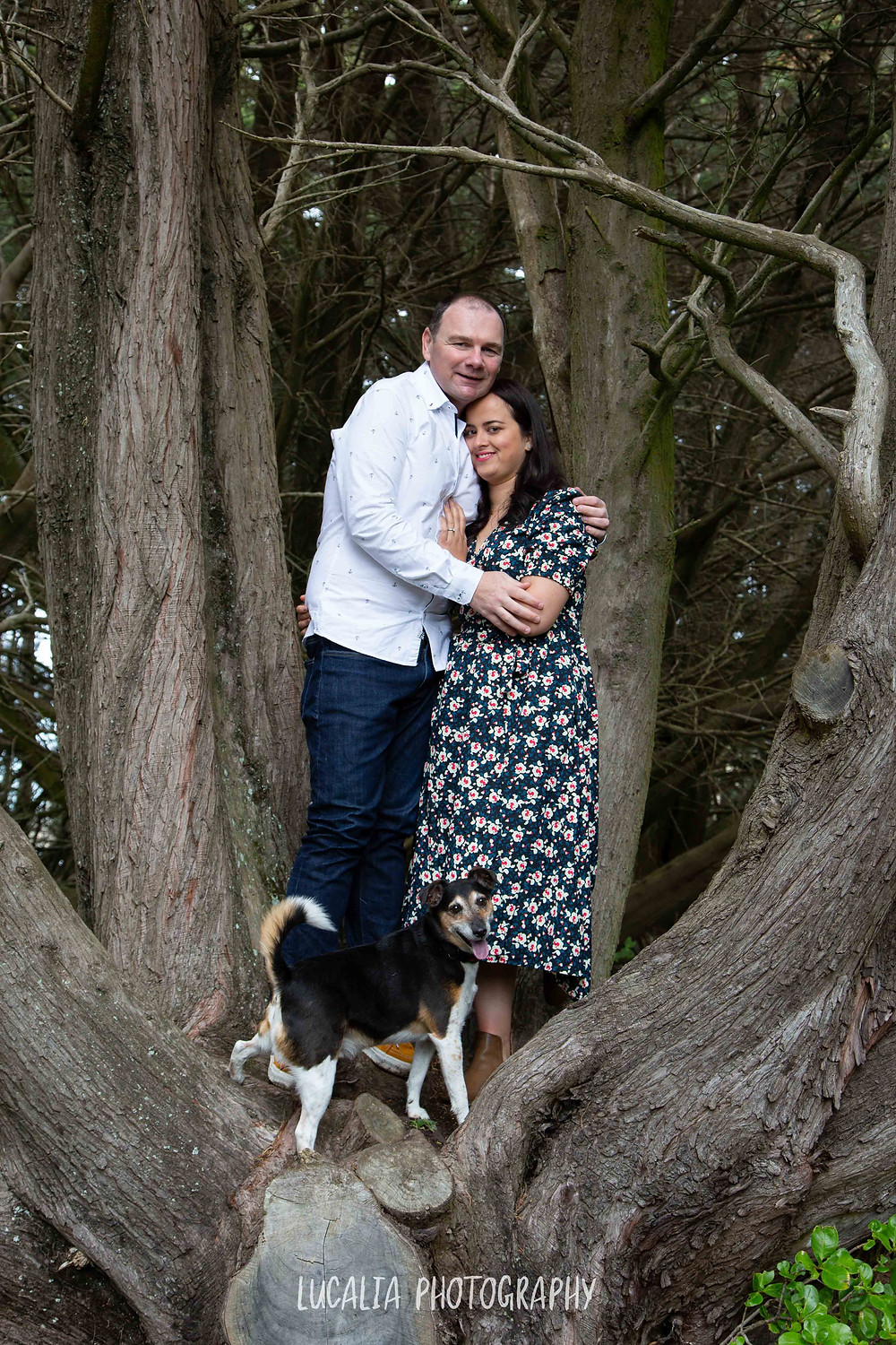 engaged couple hugging in a tree with their dog at Castlepoint, Lucalia Photography Wairarapa wedding photographer