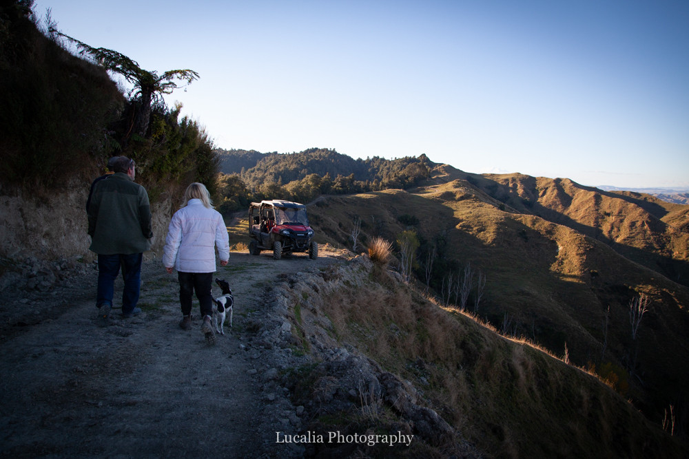 walking down the track towards the quad bike at High Peaks Farm Stay, Mangamahu, Manawatu-Wanganui, New Zealand