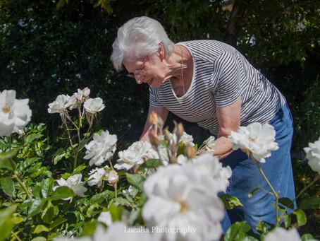 Wairarapa wedding photographer: the story of my wedding flowers