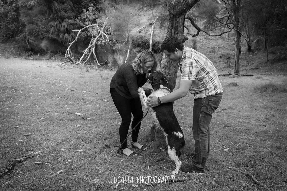 engaged couple with their excited dog, Martinborough Wairarapa wedding photographer