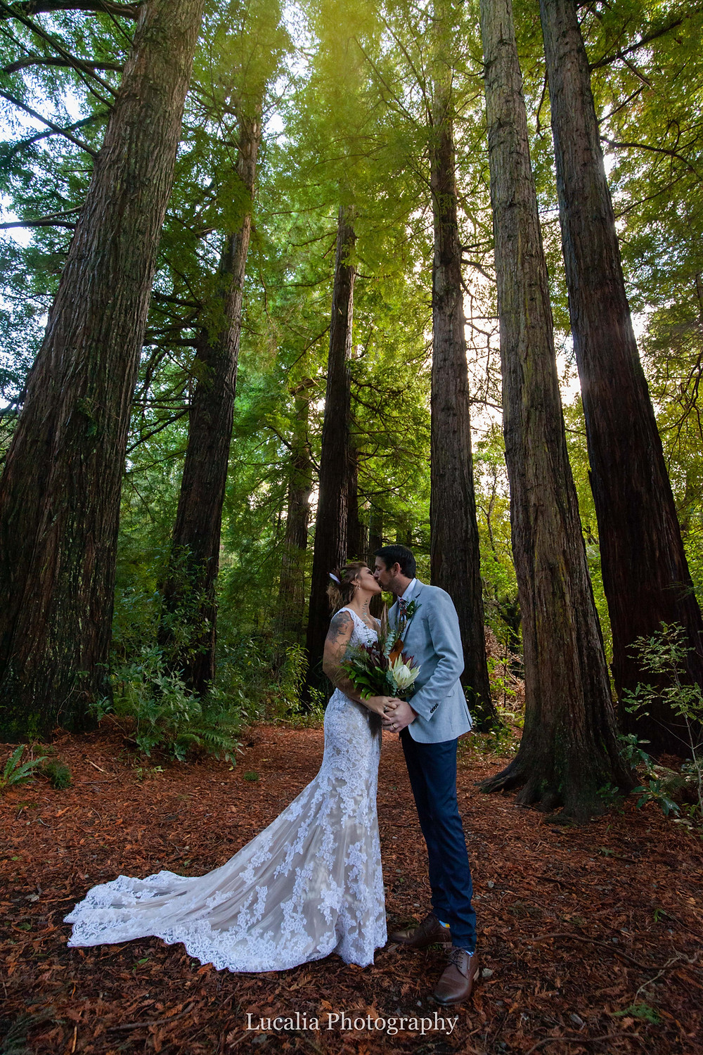 wedding couple kissing with bouquet in a redwood forest, Pukaha National Wildlife Centre, Wairarapa wedding photographer