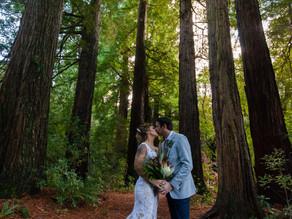 Favourite outdoor Wairarapa wedding venues
