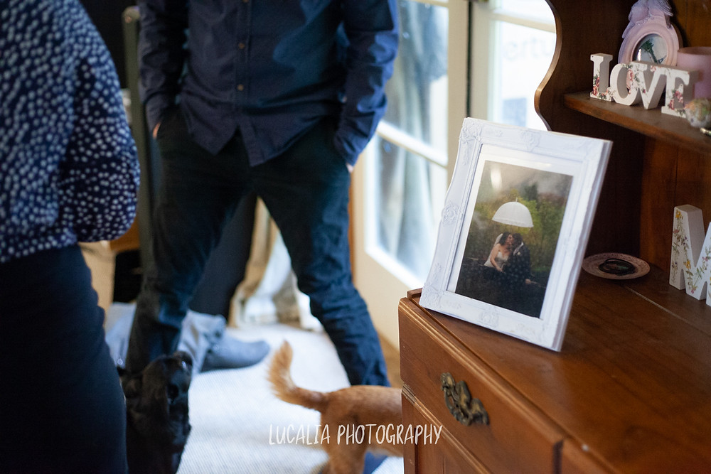wedding photo in family home, Mount Holdsworth, Wairarapa family photographer