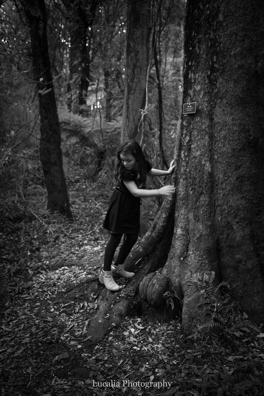 girl climbing over old tree roots, Wairarapa family photographer
