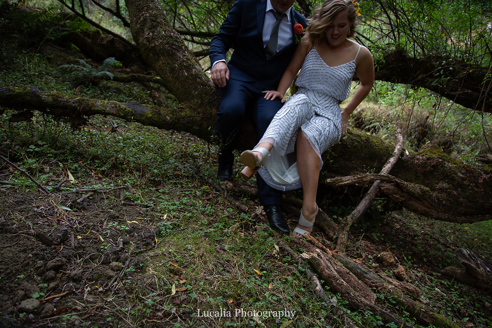 married couple sitting on a tree branch, Wairarapa wedding photographers