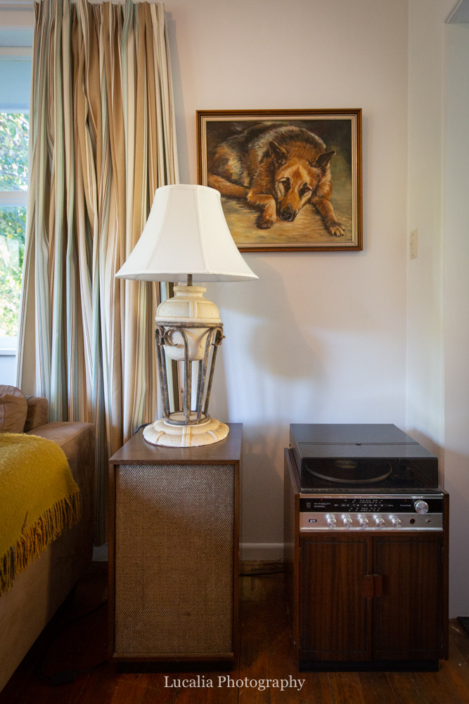 german shepard painting and record player, High Peaks Farm Stay, Mangamahu, Manawatu-Wanganui, New Zealand