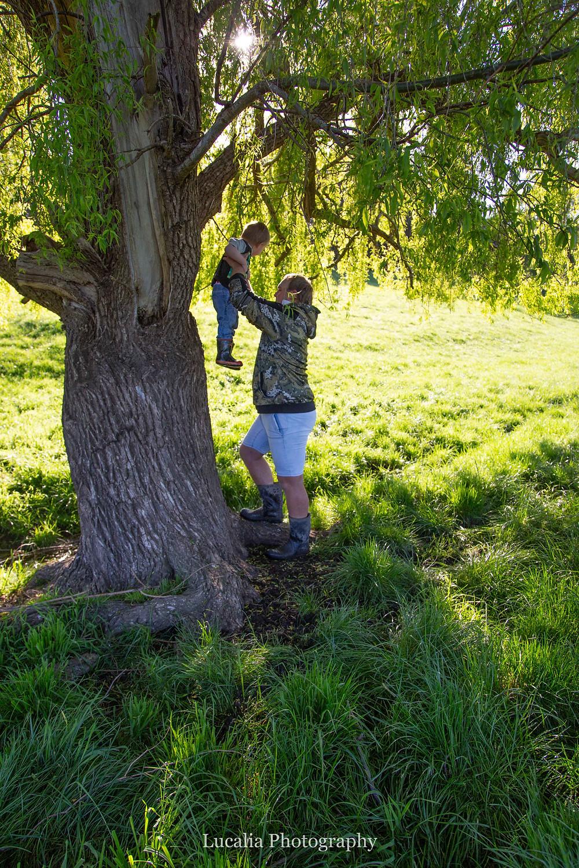 dad lifting son into a tree, Wairarapa family photographer