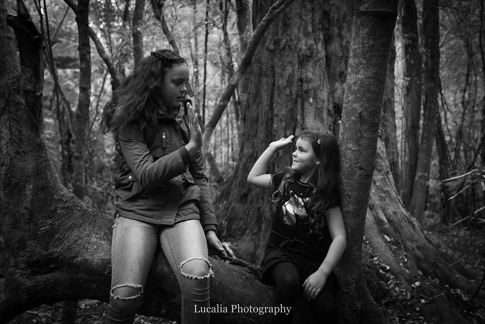 sisters high five whilst sitting on a branch in a forest, Wairarapa family photographer