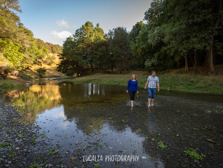 Martinborough forest and farm engagement portraits from Gemma and Sam