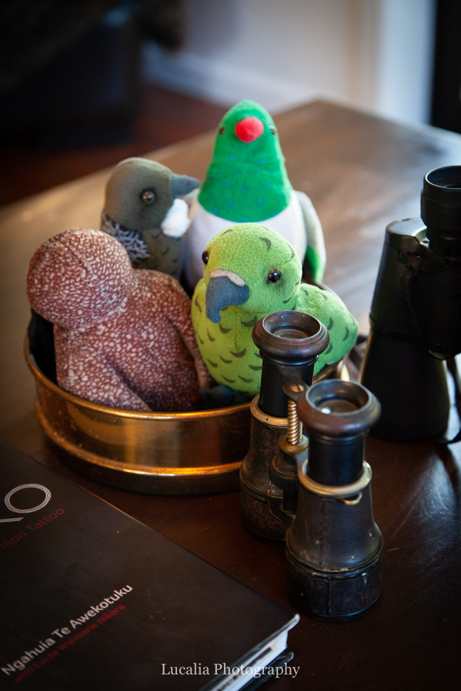 Native bird toys and binoculars Mangamahu, Manawatu-Wanganui, New Zealand