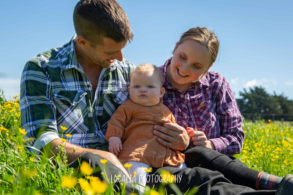 Family photos in a paddock with buttercups, Wairarapa family photographer