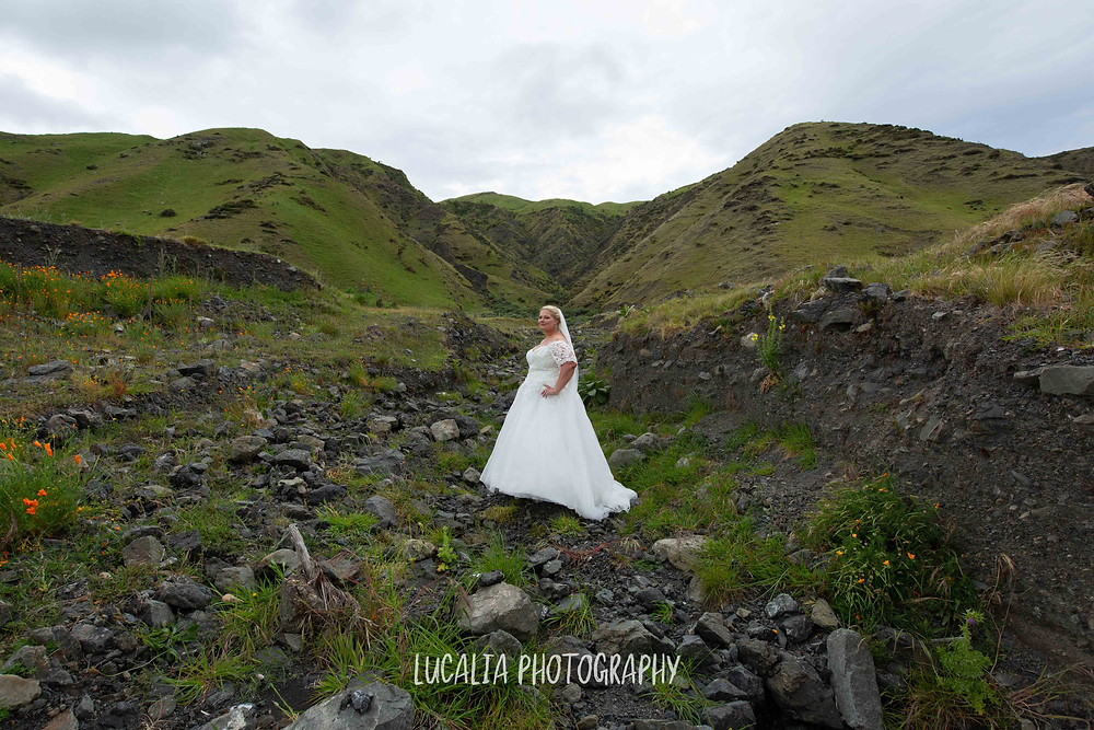 bride portrait Waimeha Camping Village Ngawi, Wairarapa wedding photographer