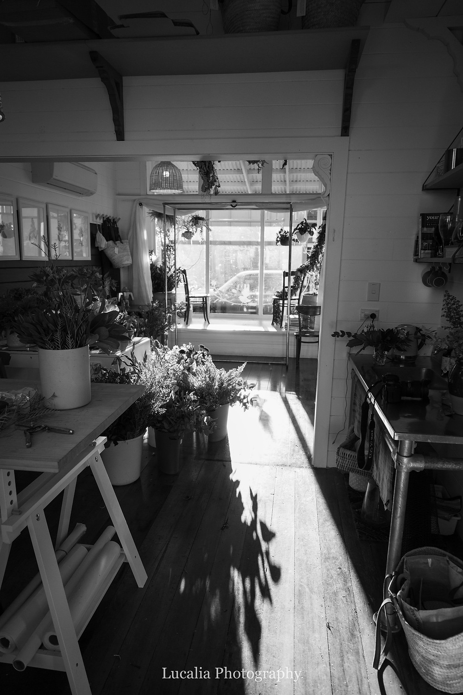 He Putiputi light-filled studio, Wairarapa