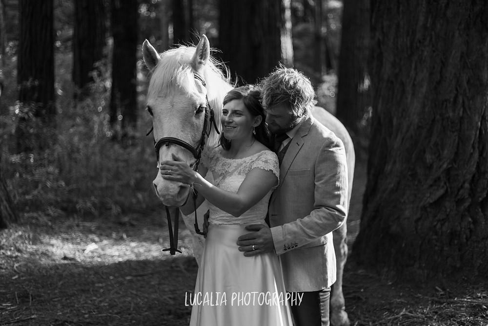 wedding couple hugging with white horse in a forest, Kiriwhakapapa Wairarapa wedding photographer