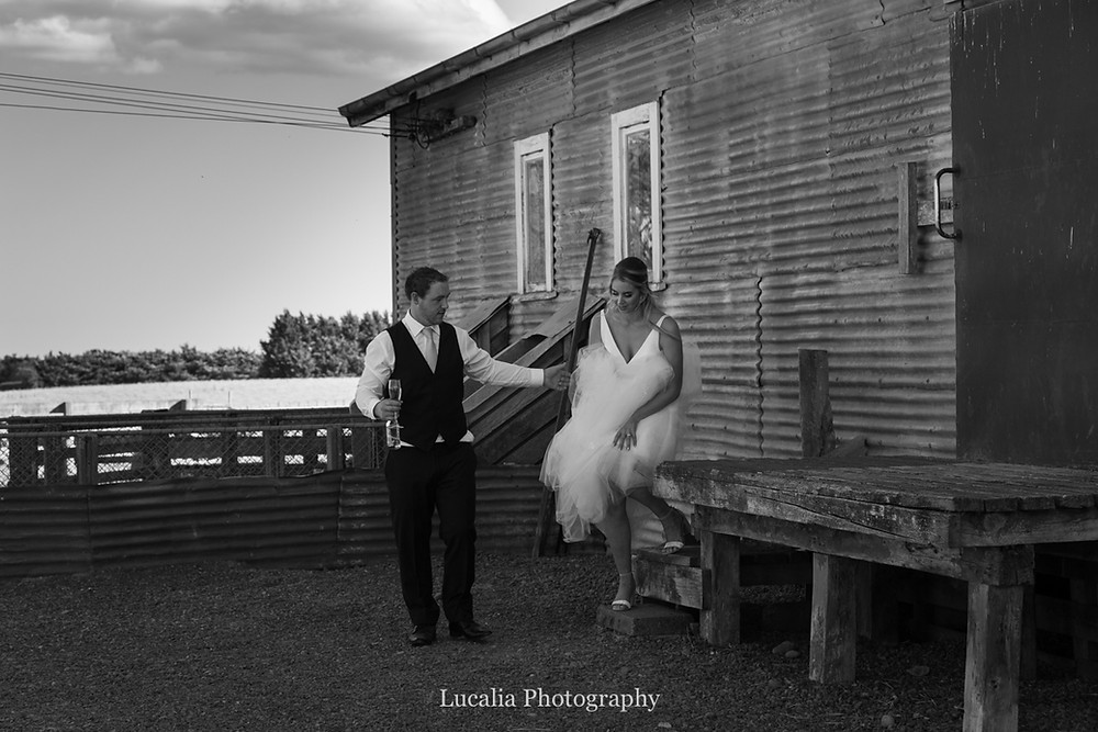 groom helping bride walking down steps outside woolshed, Wairarapa
