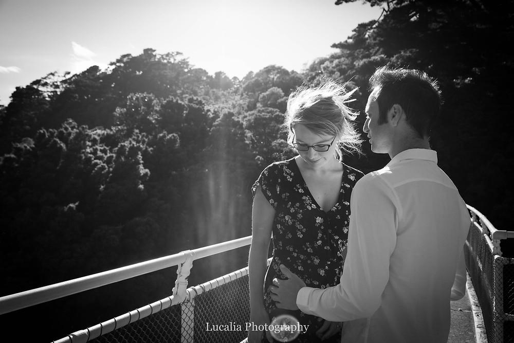 engaged couple hugging, golden light,  Zealandia, Wellington