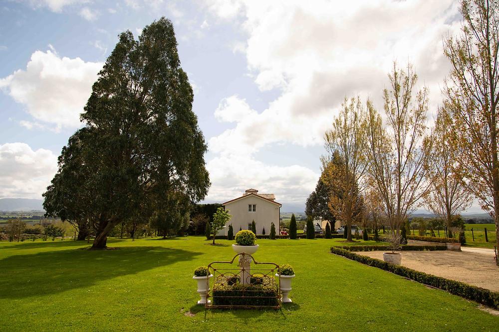 Front lawn and olive trees, Olivio~nor, Martinborough, Wairarapa wedding venue