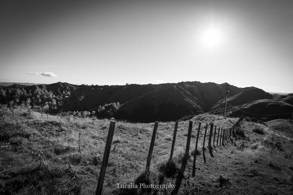fence line and setting sun at High Peaks Farm Stay, Mangamahu, Manawatu-Wanganui, New Zealand