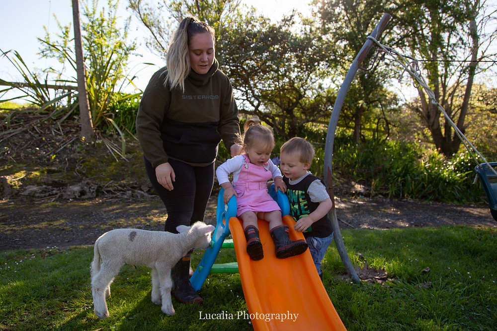 Two toddlers play on a slide with lamb and mum, Wairarapa family photographer