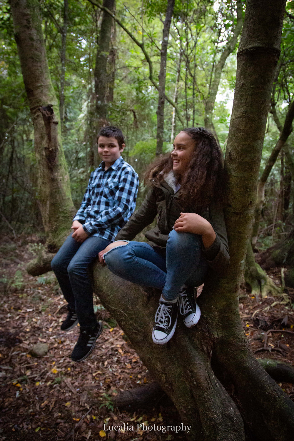 brother and sister sitting on a tree branch in a forest, Wairarapa family photographer