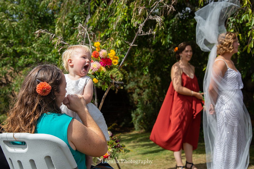 toddler laughing as brides veil blows in the wind, Wairarapa wedding photographers