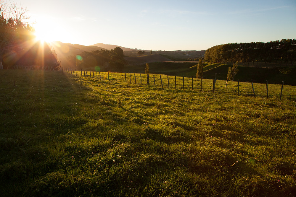 Matamata sunset over fields, New Zealand, Lucalia Photography