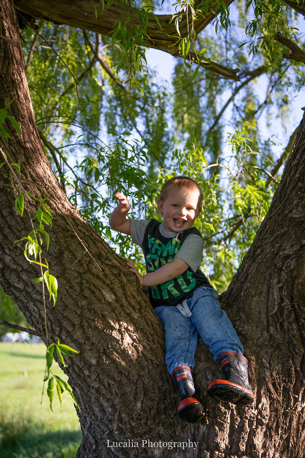 son sitting in a tree laughing, Wairarapa family photographer