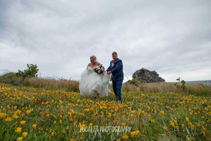 Lucalia Photography Wairarapa Wedding Photographer-2-36.jpg